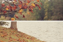 Autumn Love / by Becca Coy