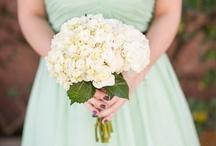 Bestie's Wedding / by Lacy Smith