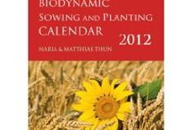 Calendars / by Bette Keeley