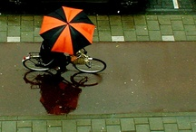 bikes and urban life / by Eleanor Taniguchi