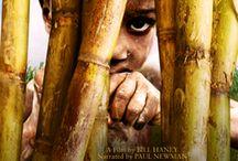 Read and Watch / by One Hundred For Haiti