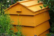 Beekeeping / by Sheila Wilcox