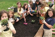 Teaching kids about growing food / by Kim Howell
