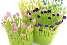 flower pots / by hanife yorulmaz
