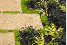 Garden Design / by Avant Gardens