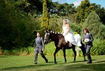 Weddings / by Woodman Estate