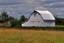 Scenic Views of the Kirksville, Missouri Area / Beauty abounds in the Northeast Missouri area year-round! / by Visit Kirksville ~ Missouri's North Star