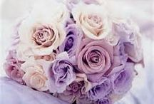 Season's Wedding Ideas!!!  / by Amanda Patten