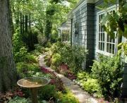 Garden / by Melissa Jerves