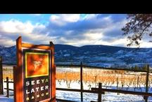 Okanagan Falls Wineries / by Savour Mag