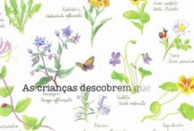 Ilustrações - botânica / by Rita Teixeira