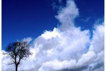 Beautiful Skies! / by Eileen Miller