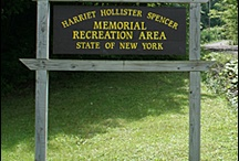 Harriet Hollister Spencer Memorial Recreation Area / PARKS IN THE FINGER LAKES REGION OF NEW YORK--The Harriet Hollister Spencer Memorial Recreation Area is located on Canadice Hill Road in the Town of Canadice, Ontario County. Open year round, this 740-acre site offers a variety of recreational opportunities: hiking,mountain biking, cross-country skiing, snowshoeing, snowmobiling, birding, photography,and picnicking.  For more information about the park, see http://www.ilovethefingerlakes.com/recreation/stateparks-harriethollisterspencer.htm / by ILovetheFingerLakes