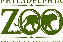 Friends of the Binghamton Zoo / by Binghamton Zoo
