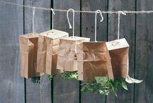 Herbs/Plants / by Marta Villarreal