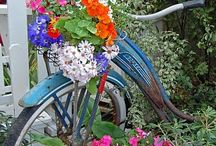 Old BICYCLES / by Lynn Smith Barbadora(Painting Thyme Needfuls)