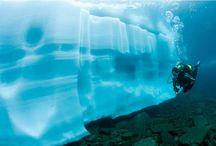 Scuba Dive / by Moises Deniz Casares