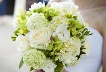 MB's  Wedding  / by Cindy Lanzi