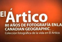 Acento - News / by acento.com.do
