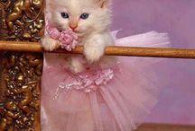 Cute Critters / by Jami Myatt