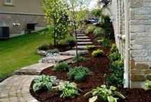 Landscaping ideas / by Stephanie Snyder
