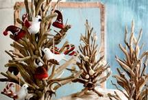 Beach Christmas ideas / by dee oakley