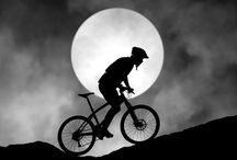 Mountain Biking / by Dianne D Smith