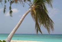 Grand Cayman here we come / by Julie Elder
