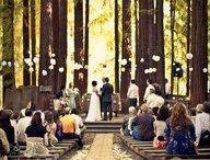 The Wedding. / by Sarah Jarrett