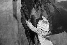 Horses / by Jessann Lightning River