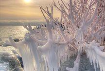 Winter Photos / by Cristi Kwei
