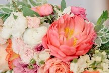 Rachel and James / by Philosophy Flowers Official