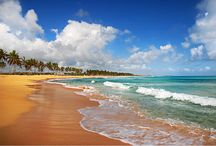Dominican Republic  / by Now Resorts & Spas