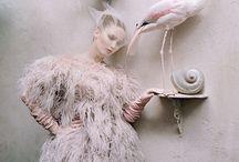 Flamingos / by Emily Weinstein