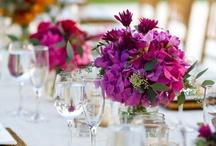 Wedding... / by Alexa Lowther