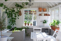 Outdoor Dining Rooms / by Courtney Scrabeck