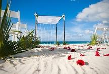 My Wedding / by Andi Zehren