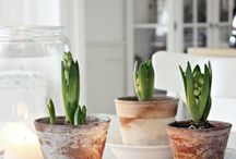HoMeInSpirAtiOn / by Catherine Jean-Duclos