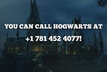 You're A Wizard, Harry / Harry Potter, 'nuff said / by Elinore Hooven