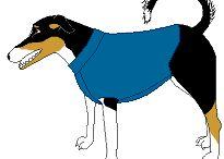 dog stuff / by Theresa Kelly