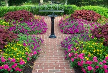 Porches~Outdoors~Gardens / by Penny Fahey