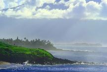 Hawaiian Inspired decorating / by Tiffany Wells