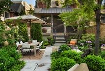 Backyards/Courtyards / by Jane Dough