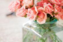 Flowers / by Helen Bucknell