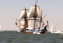 tall ships / by Catherine Kryger