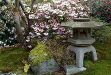 Japan in Seattle / by Patricia Belyea