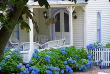 gardening / by Sharon Childs