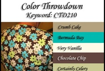 colors for cards / by Cindy Lynn