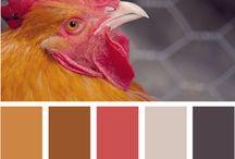 Colors i like / by Denise Burrow