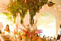table scapes / by Lynn Petti